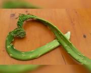 Grünspargelherz.jpg